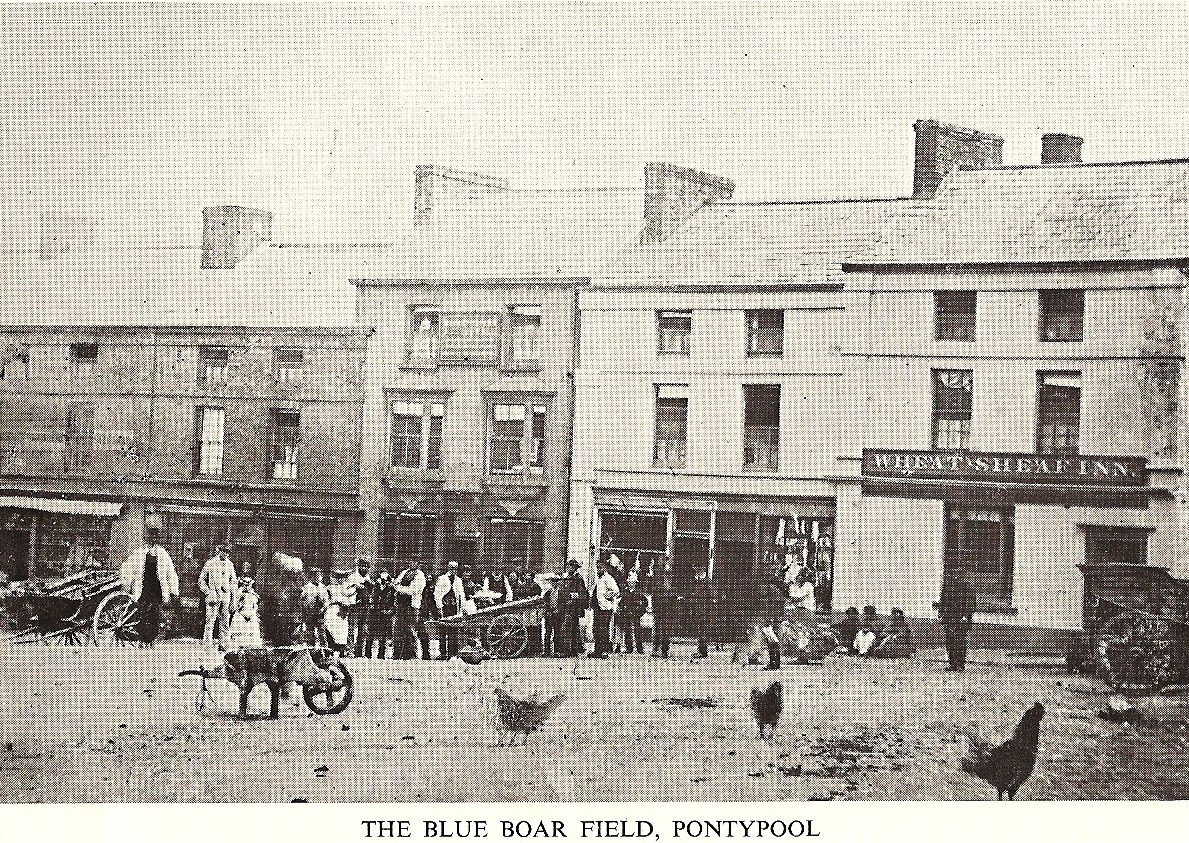 blue boar field
